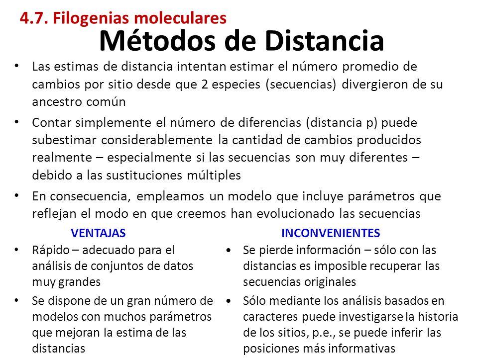 Métodos de Distancia 4.7. Filogenias moleculares