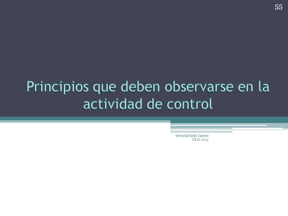 Principios que deben observarse en la actividad de control