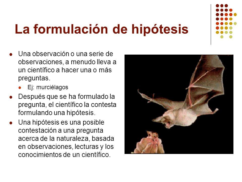 La formulación de hipótesis