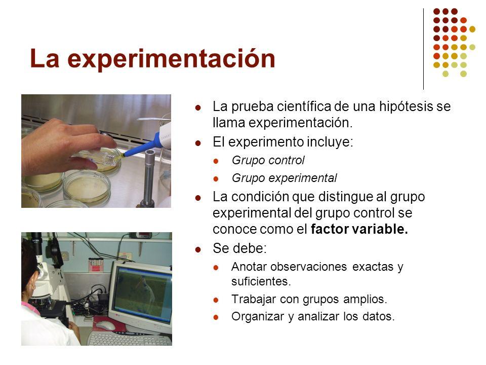 La experimentación La prueba científica de una hipótesis se llama experimentación. El experimento incluye: