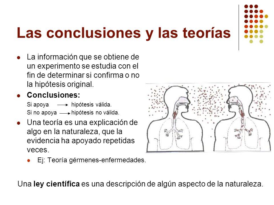 Las conclusiones y las teorías