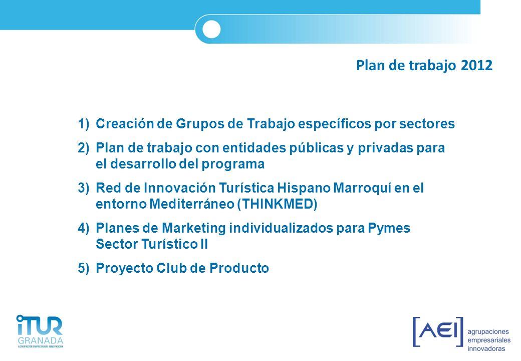 Plan de trabajo 2012 Creación de Grupos de Trabajo específicos por sectores.