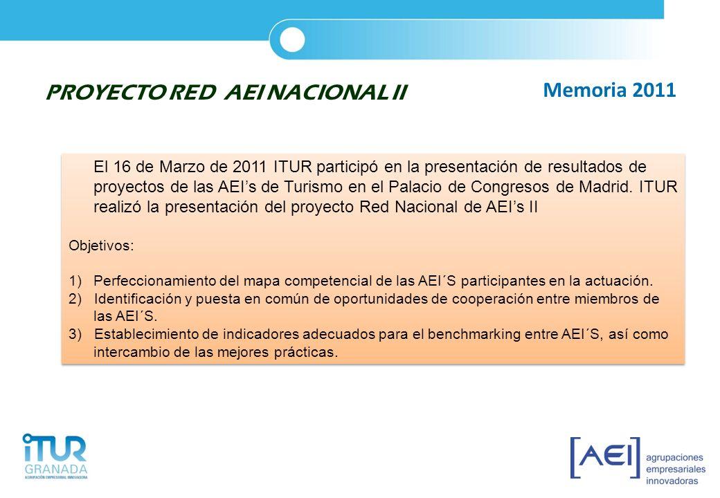 PROYECTO RED AEI NACIONAL II Memoria 2011
