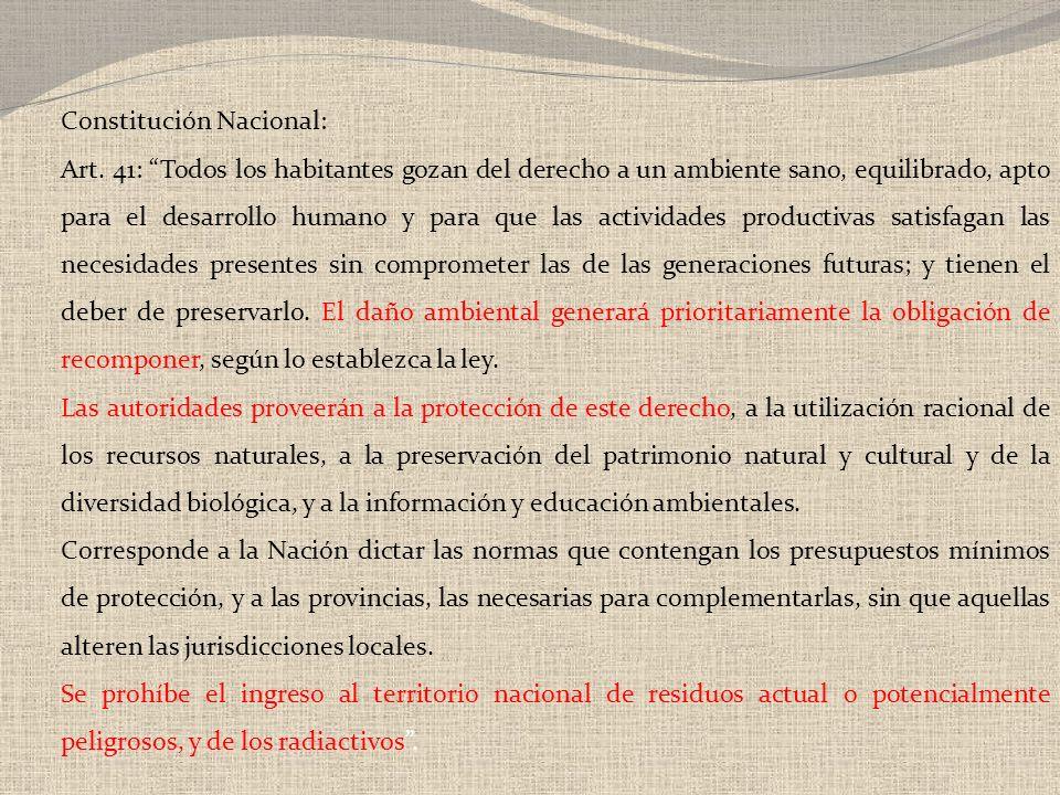 Constitución Nacional: