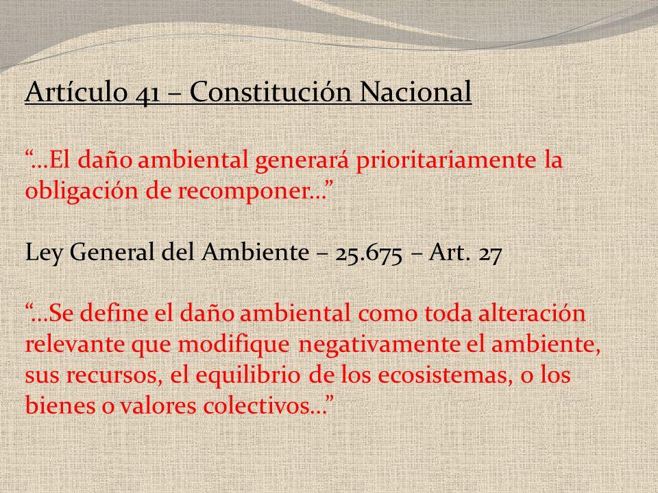 Artículo 41 – Constitución Nacional