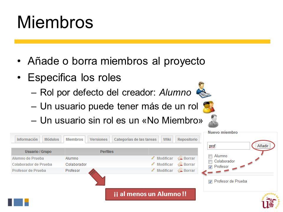 Miembros Añade o borra miembros al proyecto Especifica los roles