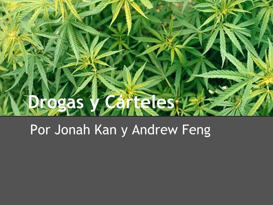 Por Jonah Kan y Andrew Feng