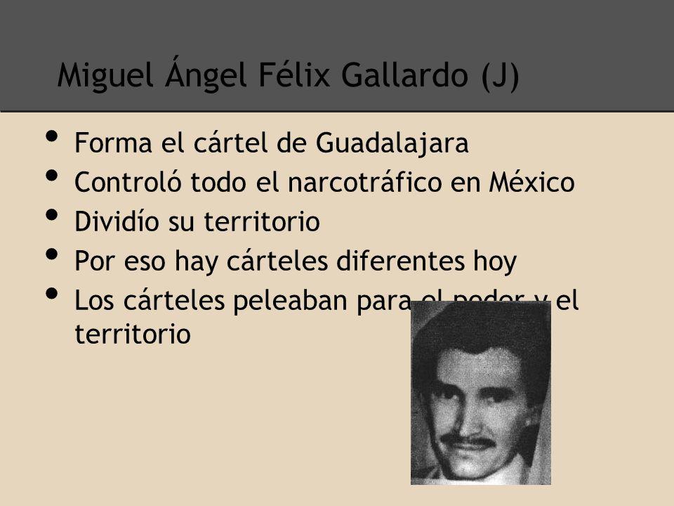 Miguel Ángel Félix Gallardo (J)