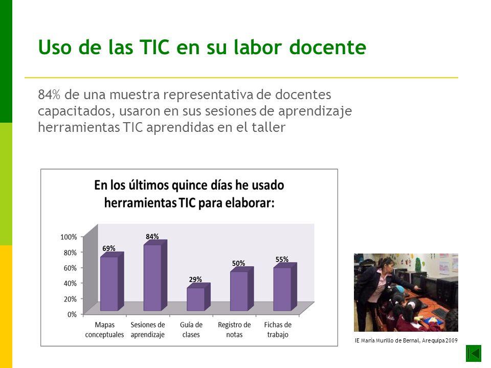 Uso de las TIC en su labor docente