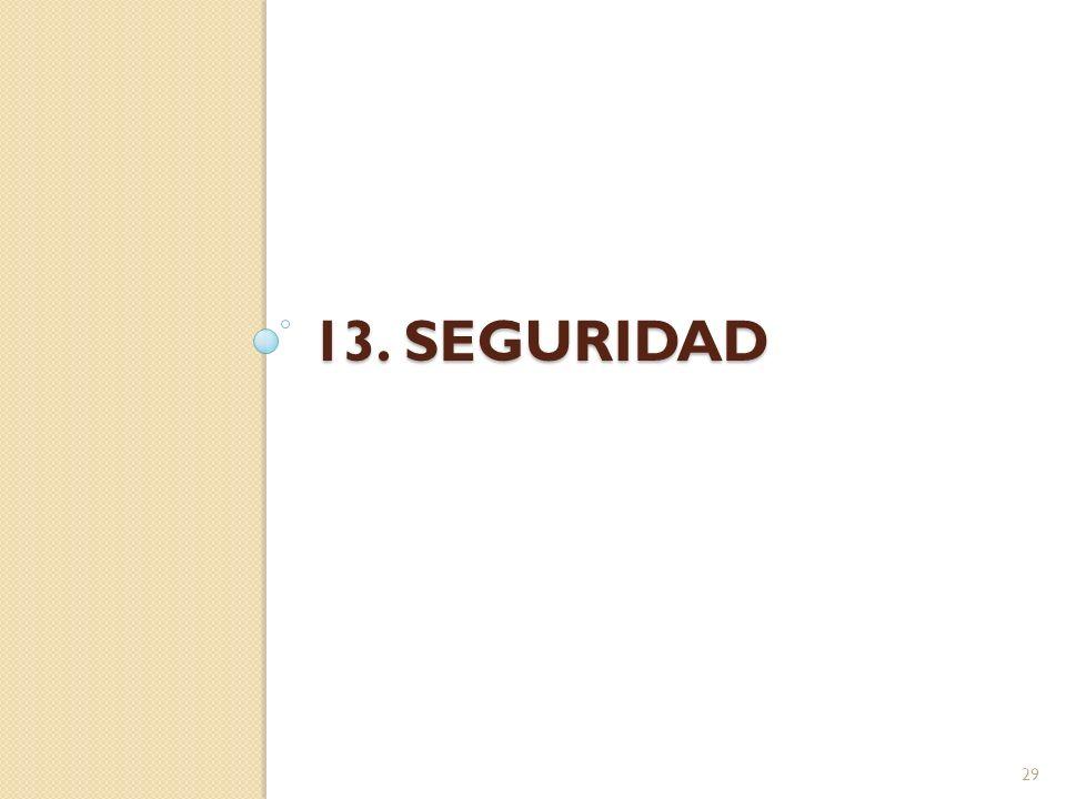 13. seguridad