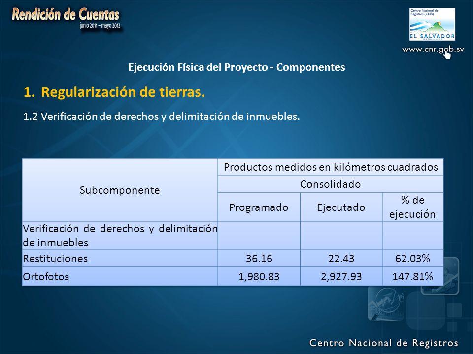Ejecución Física del Proyecto - Componentes