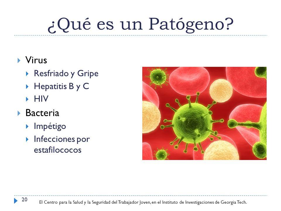 ¿Qué es un Patógeno Virus Bacteria Resfriado y Gripe Hepatitis B y C