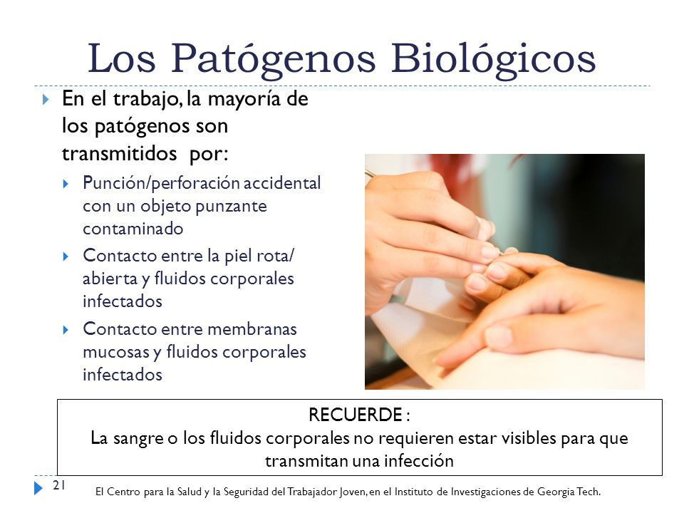 Los Patógenos Biológicos