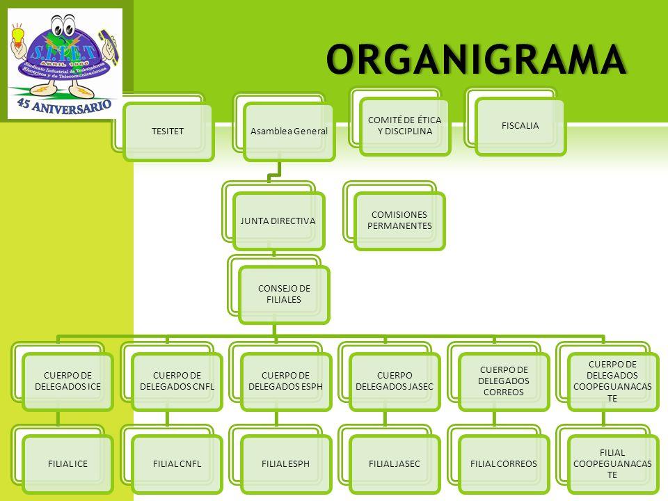 ORGANIGRAMA TESITET Asamblea General JUNTA DIRECTIVA