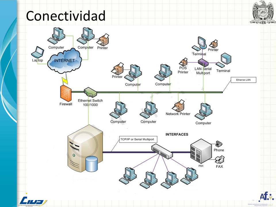 Conectividad