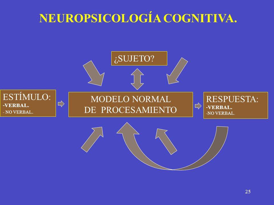 NEUROPSICOLOGÍA COGNITIVA.
