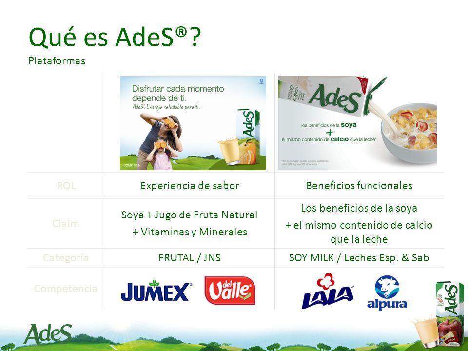 Qué es AdeS® Plataformas