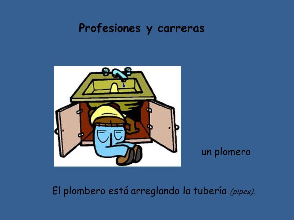 Profesiones y carreras