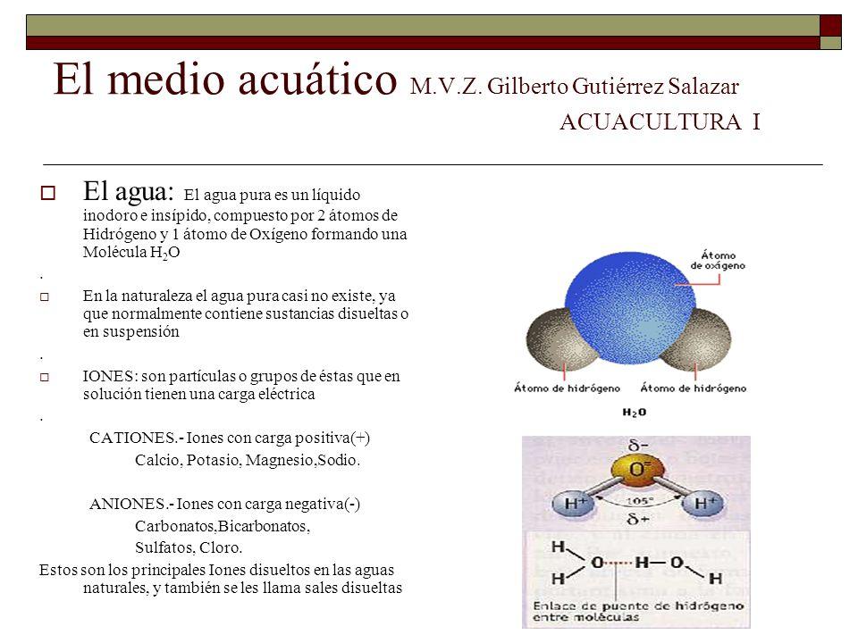 El medio acuático M.V.Z. Gilberto Gutiérrez Salazar ACUACULTURA I
