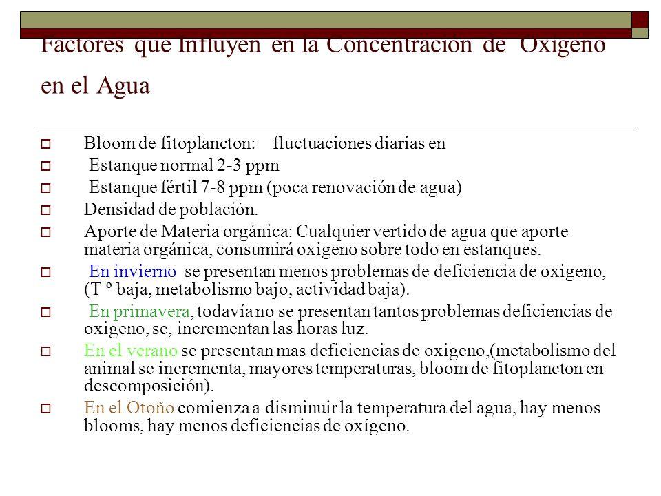 Factores que Influyen en la Concentración de Oxígeno en el Agua