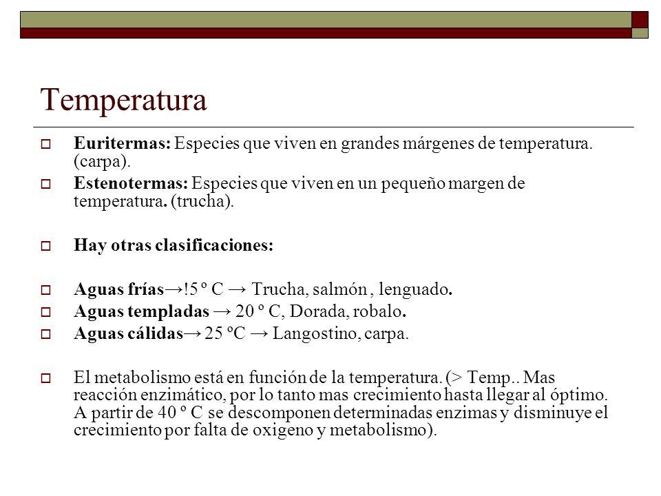 Temperatura Euritermas: Especies que viven en grandes márgenes de temperatura. (carpa).