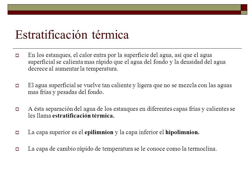 Estratificación térmica