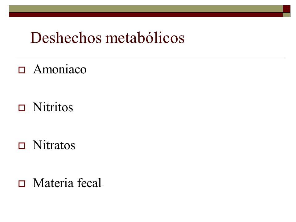 Deshechos metabólicos
