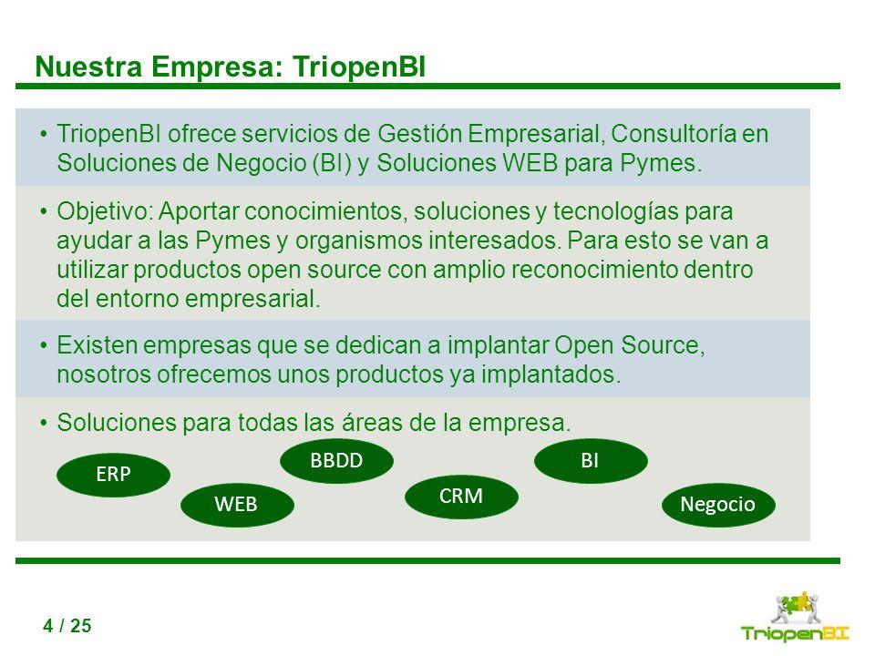 Nuestra Empresa: TriopenBI