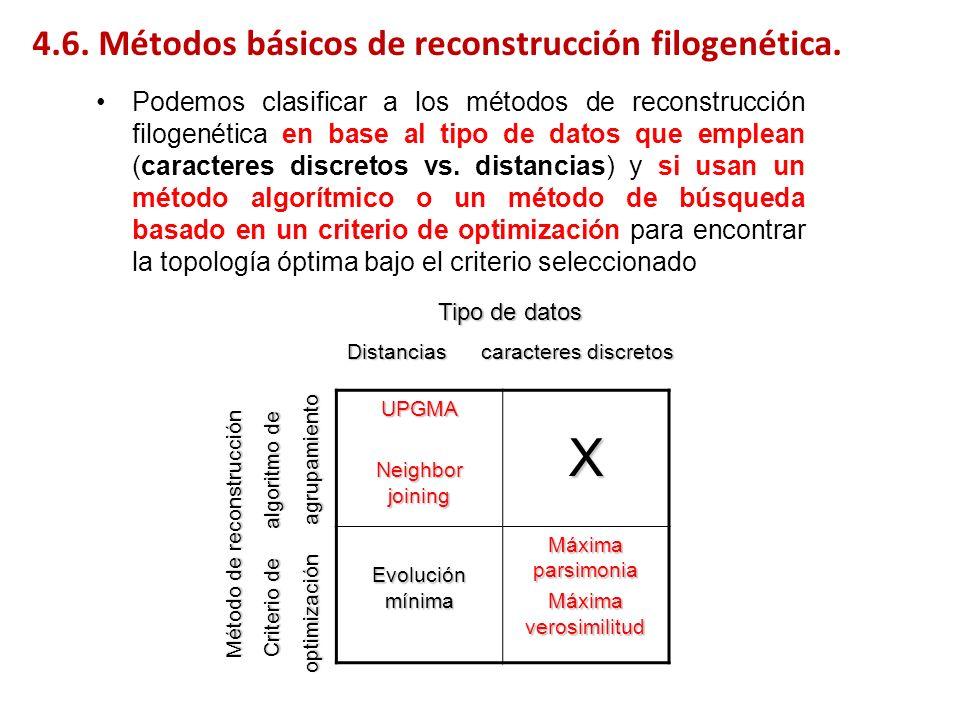 X 4.6. Métodos básicos de reconstrucción filogenética.
