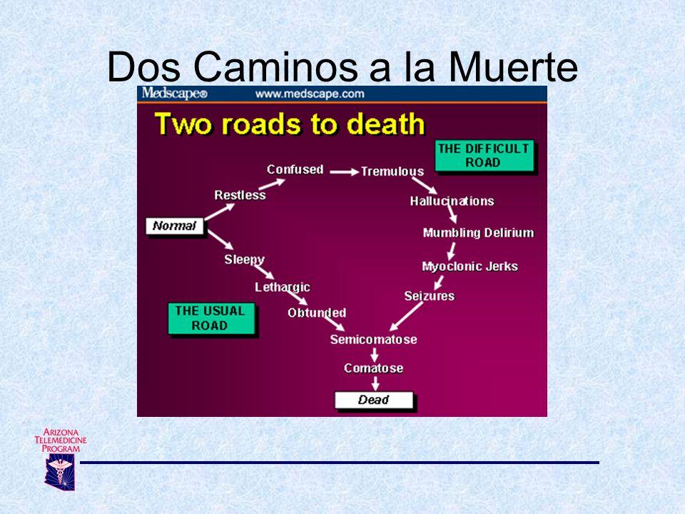 Dos Caminos a la Muerte 12. Camino a la muerte - Dos caminos a la muerte. confused= confundido/a.