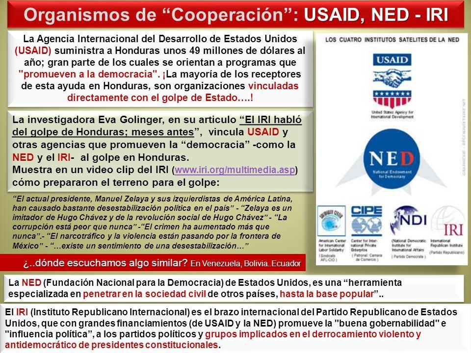Organismos de Cooperación : USAID, NED - IRI