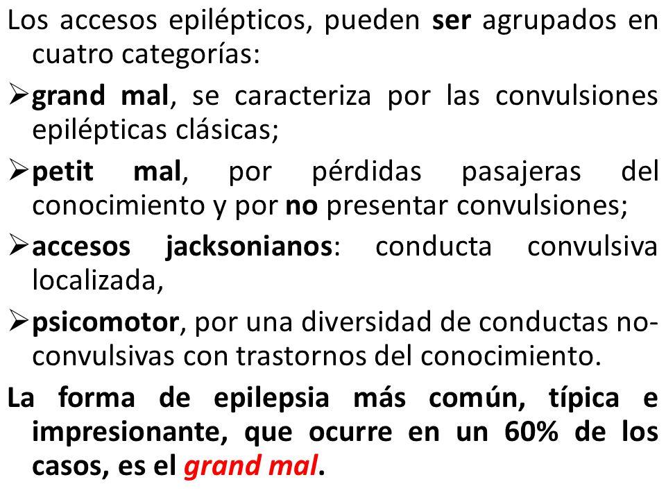 Los accesos epilépticos, pueden ser agrupados en cuatro categorías: