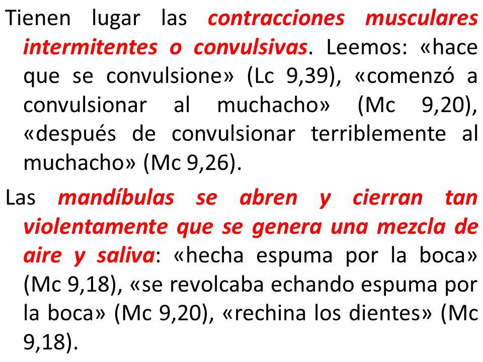 Tienen lugar las contracciones musculares intermitentes o convulsivas