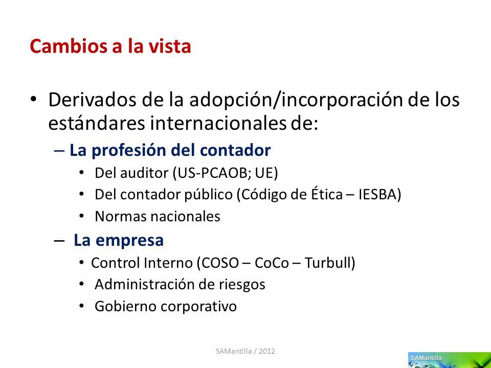 Cambios a la vista Derivados de la adopción/incorporación de los estándares internacionales de: La profesión del contador.