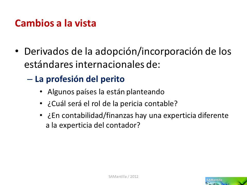 Cambios a la vista Derivados de la adopción/incorporación de los estándares internacionales de: La profesión del perito.
