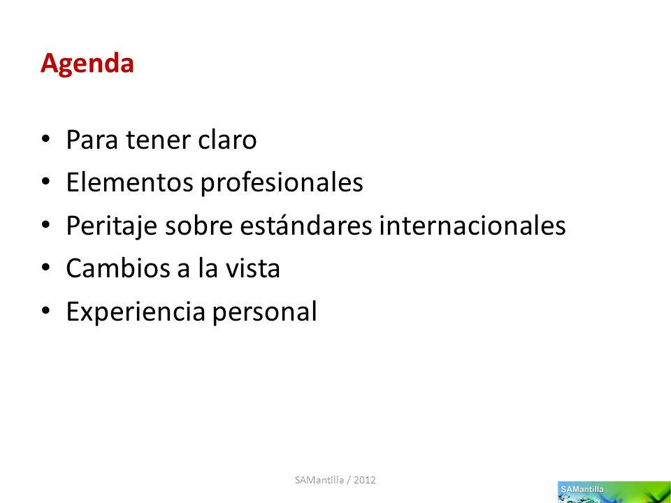 Elementos profesionales Peritaje sobre estándares internacionales