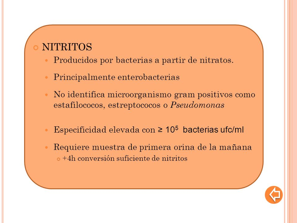 NITRITOS Producidos por bacterias a partir de nitratos.