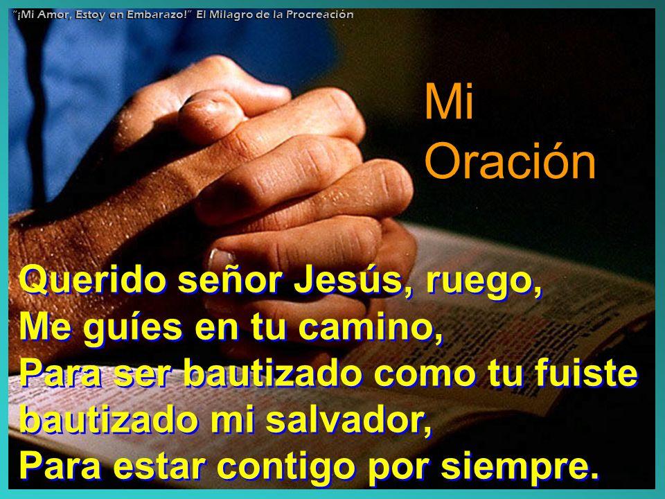 Mi Oración Querido señor Jesús, ruego, Me guíes en tu camino,