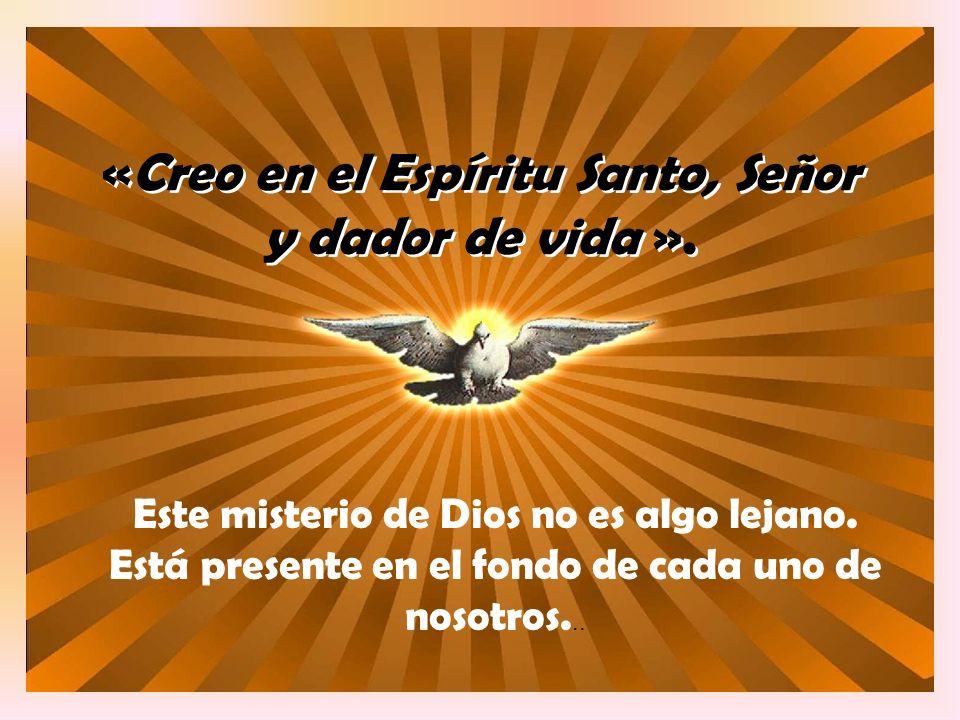 «Creo en el Espíritu Santo, Señor y dador de vida ».