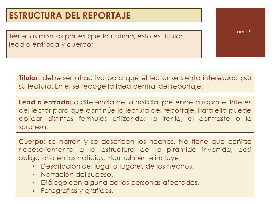 ESTRUCTURA DEL REPORTAJE