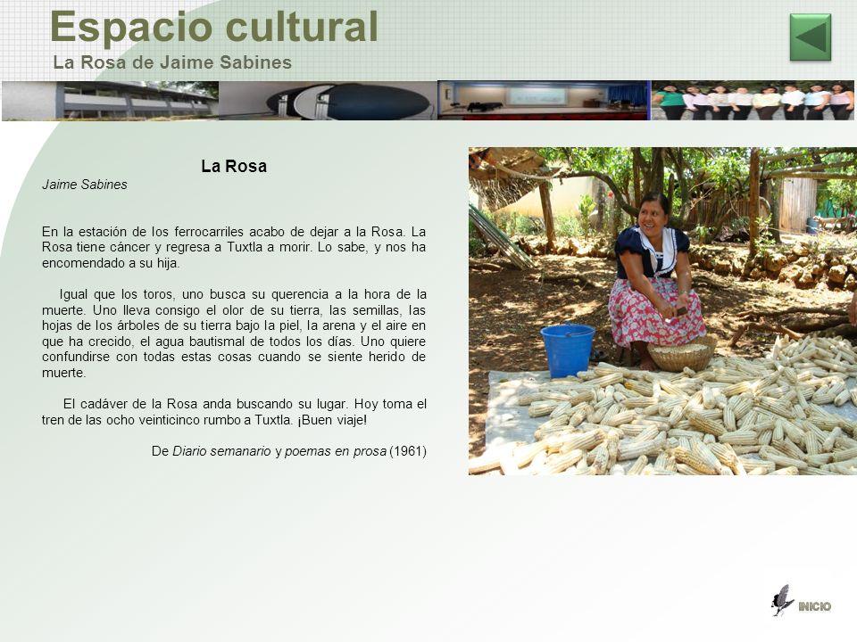 Espacio cultural La Rosa de Jaime Sabines