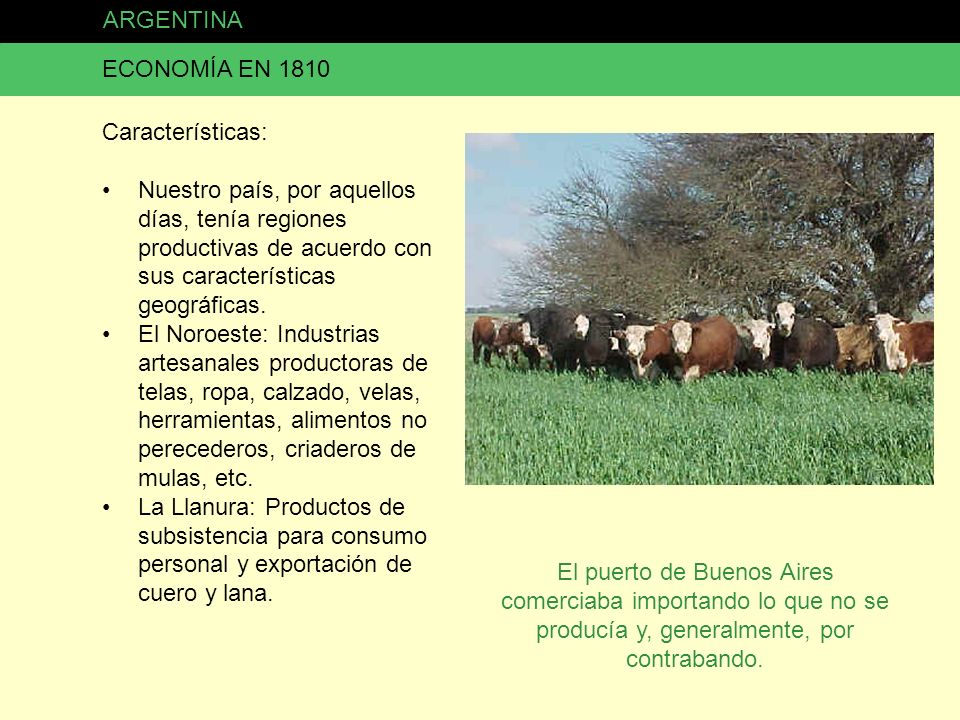 ARGENTINA ECONOMÍA EN 1810. Características: