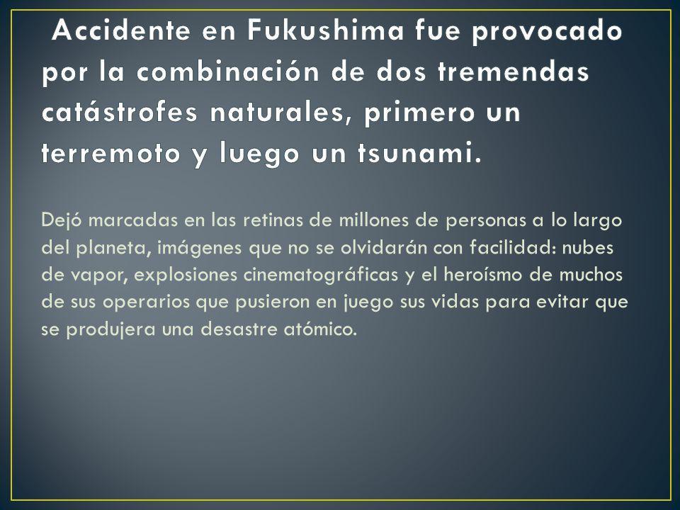 Accidente en Fukushima fue provocado por la combinación de dos tremendas catástrofes naturales, primero un terremoto y luego un tsunami.
