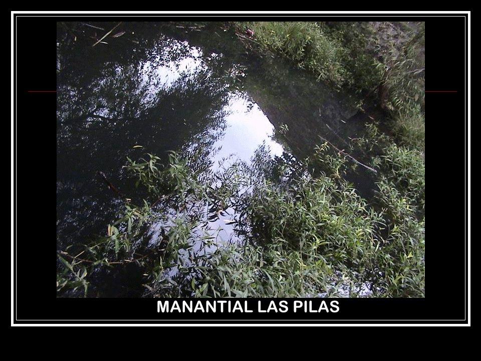 MANANTIAL LAS PILAS
