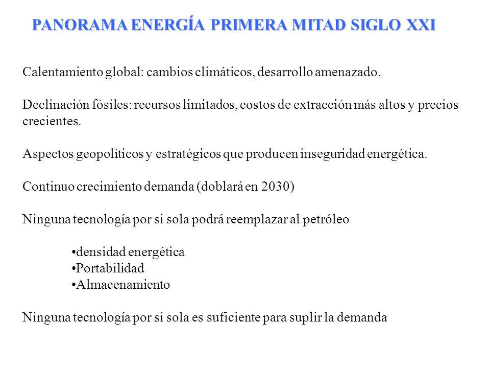 PANORAMA ENERGÍA PRIMERA MITAD SIGLO XXI