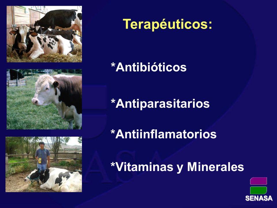 *Vitaminas y Minerales