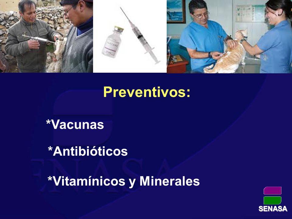 *Vitamínicos y Minerales