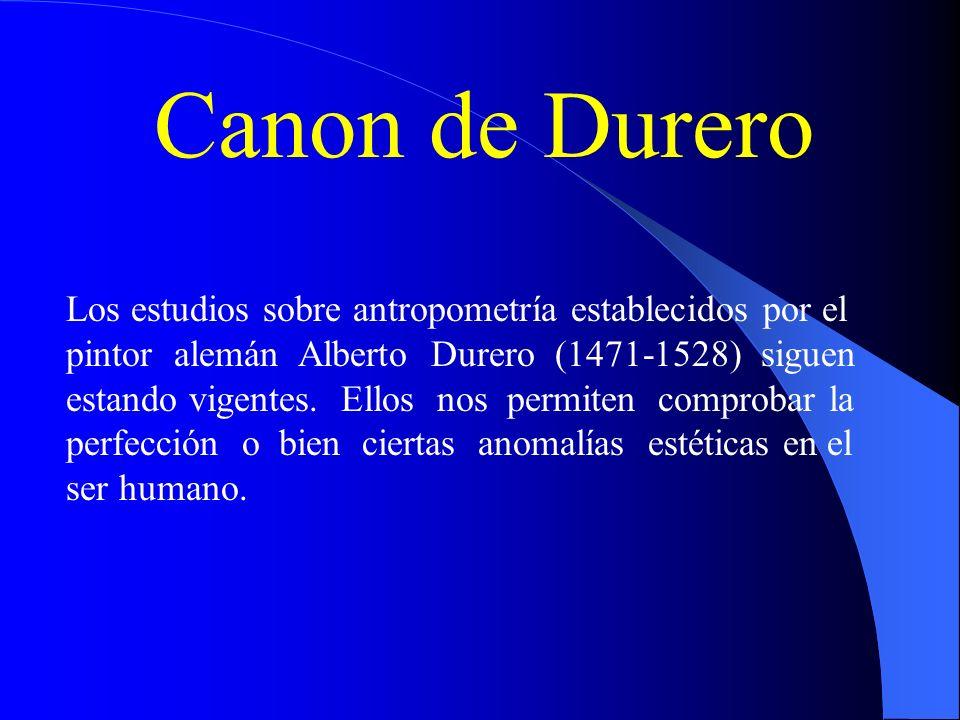 Canon de Durero Los estudios sobre antropometría establecidos por el