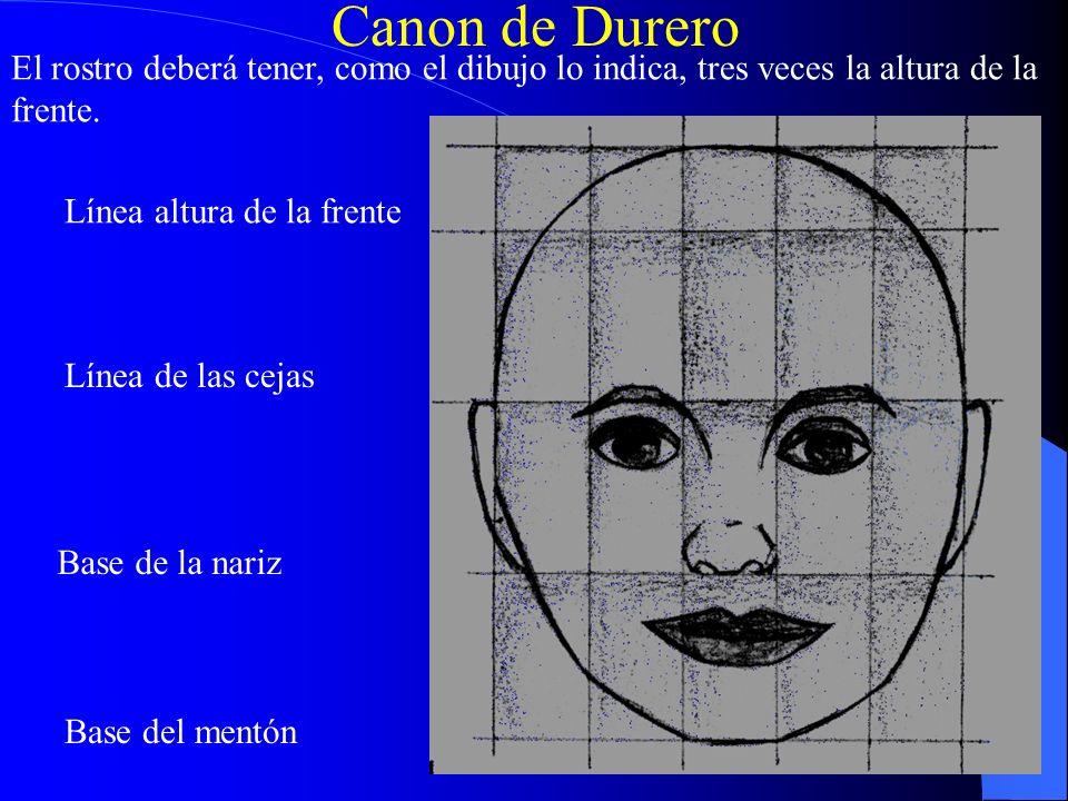 Canon de Durero El rostro deberá tener, como el dibujo lo indica, tres veces la altura de la frente.