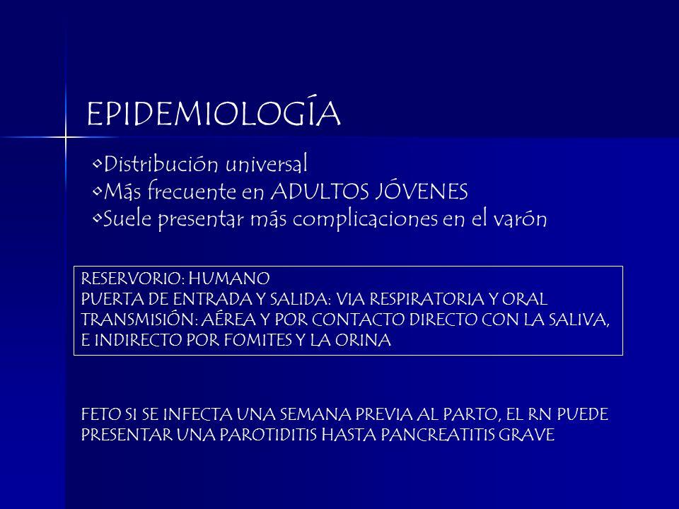 EPIDEMIOLOGÍA Distribución universal Más frecuente en ADULTOS JÓVENES